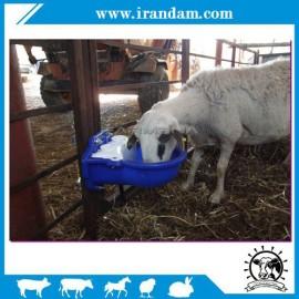 ابخوری اتوماتیک گوسفندی