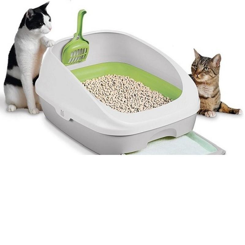 خاک بستر گربه(خاک گربه)